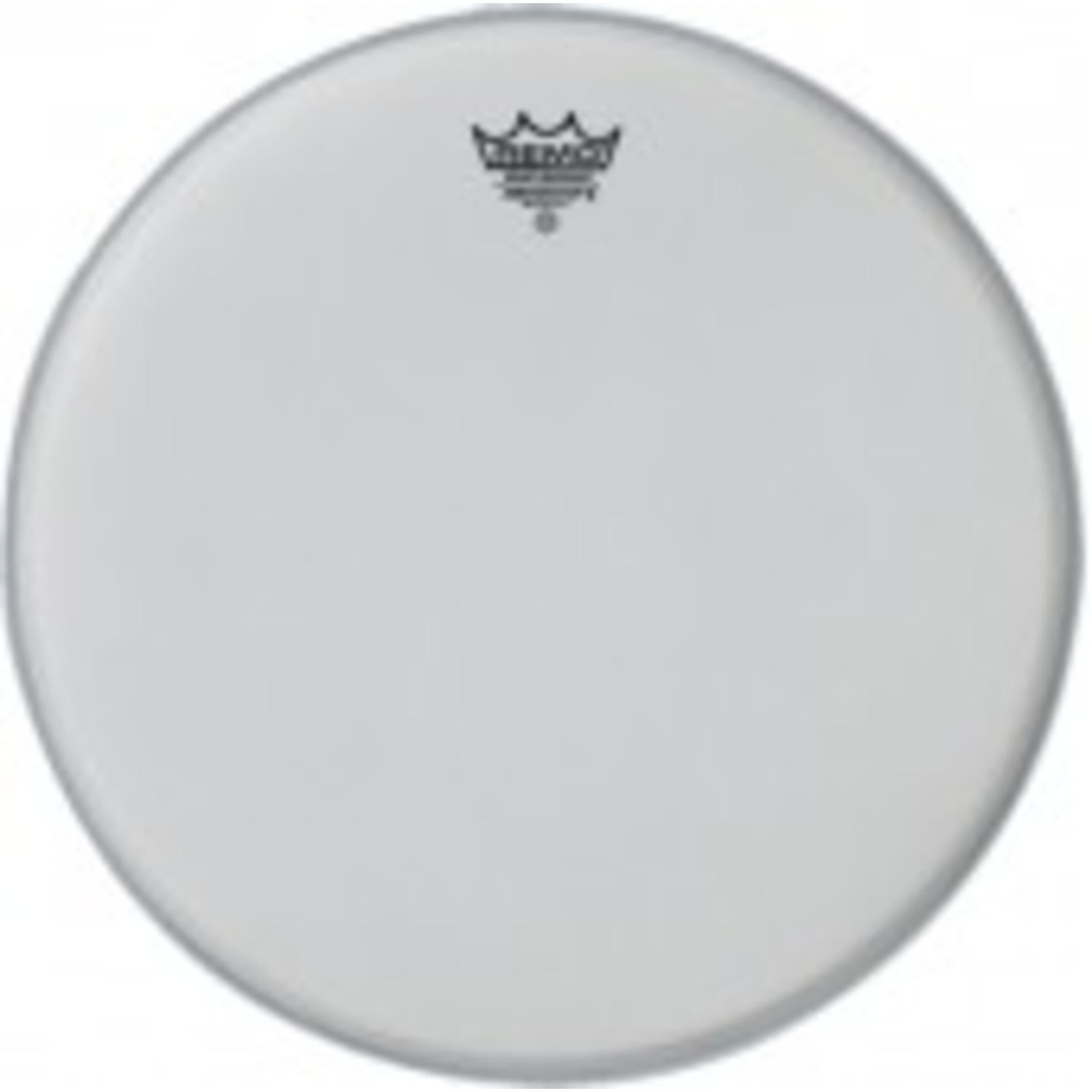 remo ambassador x drum head giggear