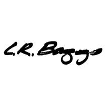 LR Baggs
