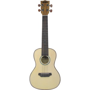 Kala Flame Maple Series - KA-FMCG Concert Ukulele