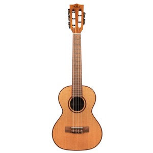 Kala 5-string Tenor Ukulele with Slot Headstock - KA-ATP5-CTG