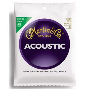 Martin M180 - 12 String Acoustic Strings