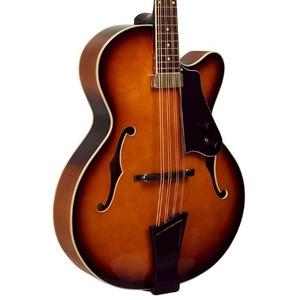 Gold Tone Mandocello Electro Acoustic