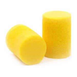 Planet Waves Foam Ear Plugs