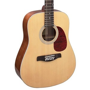 Brunswick BD20012 - 12 String