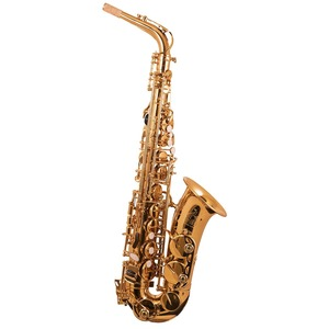 Trevor James The Horn Alto Sax