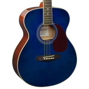 Brunswick BF200 Acoustic Guitar - Blue