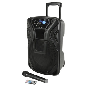 QTX Busker 10 - Portable Battery PA Inc. Wireless Mic
