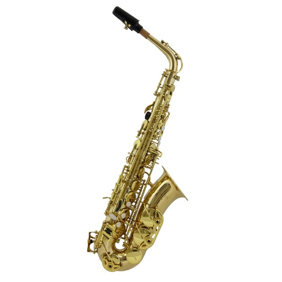 Vivace By Kurioshi Alto Sax Outfit in Gold Laquer