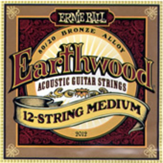 Ernie Ball 2012 Earthwood 12 String Medium