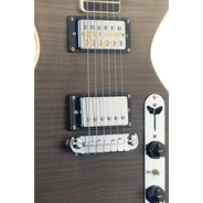 Silveray Special Deluxe Electric Guitar - Shading Black/HH